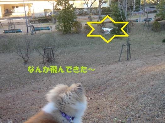 f0121712_22053388.jpg
