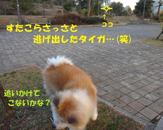f0121712_22103121.jpg