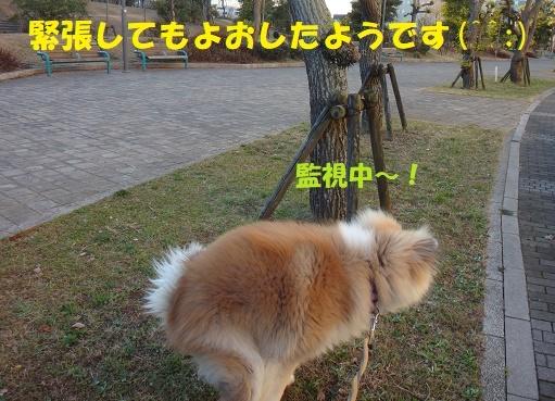 f0121712_22103848.jpg