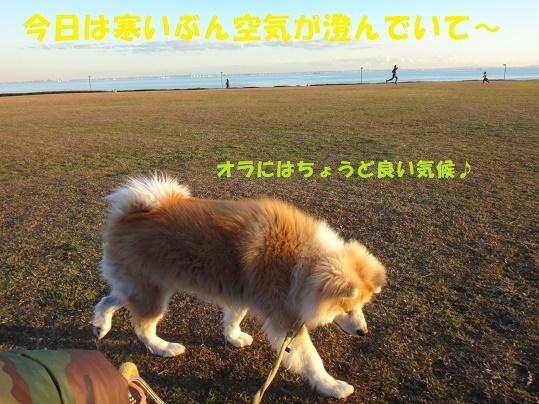 f0121712_22420076.jpg
