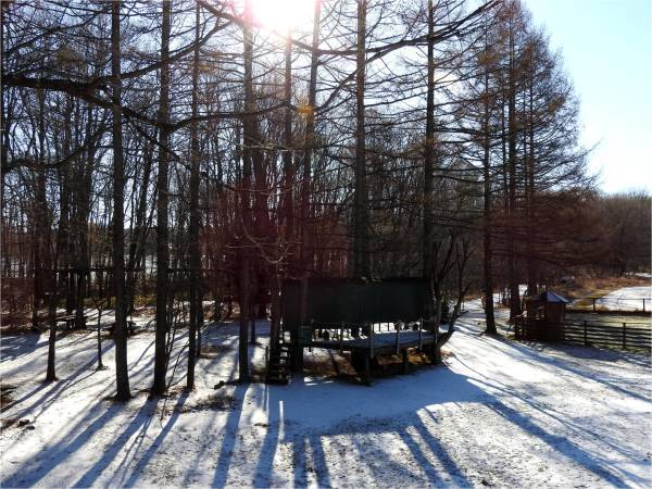 積雪1cmほど、午前中・夜間路面凍結注意!!(2017年12月9日)_b0174425_09401005.jpg