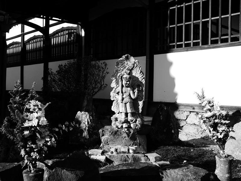 興聖寺 光と影_e0374932_13015707.jpg