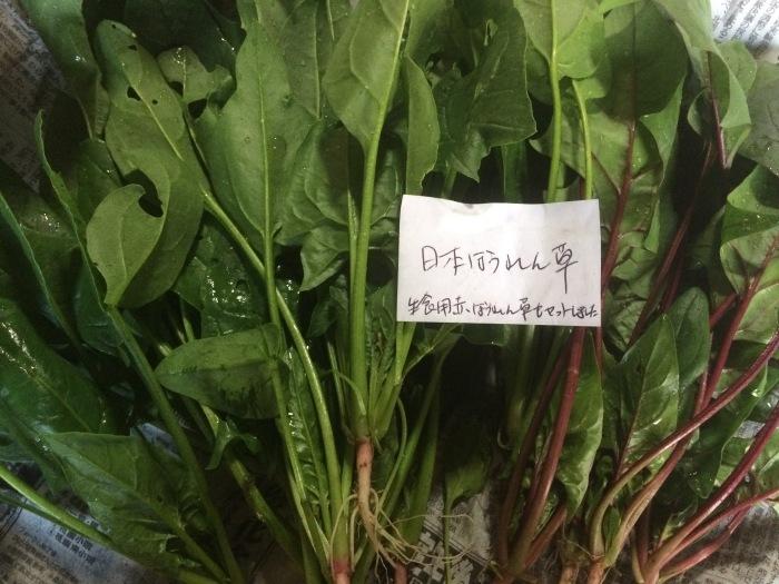 野菜のこと_b0057979_22084030.jpg