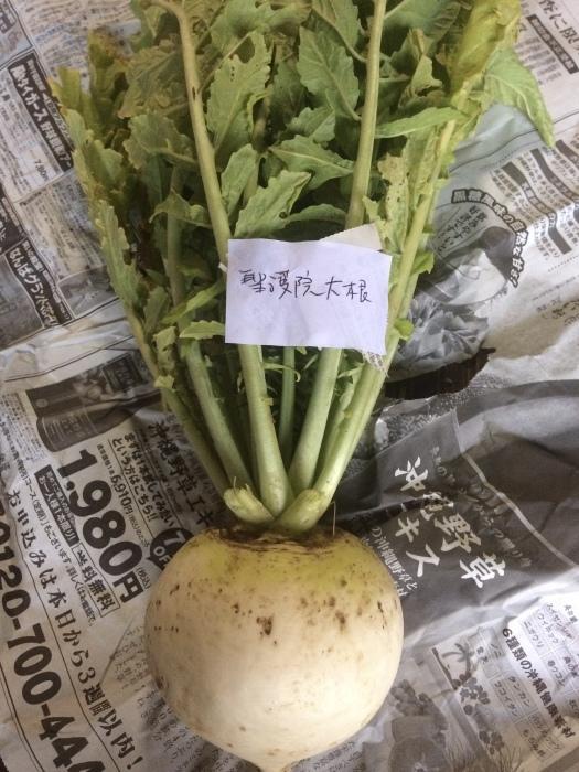 野菜のこと_b0057979_22094068.jpeg