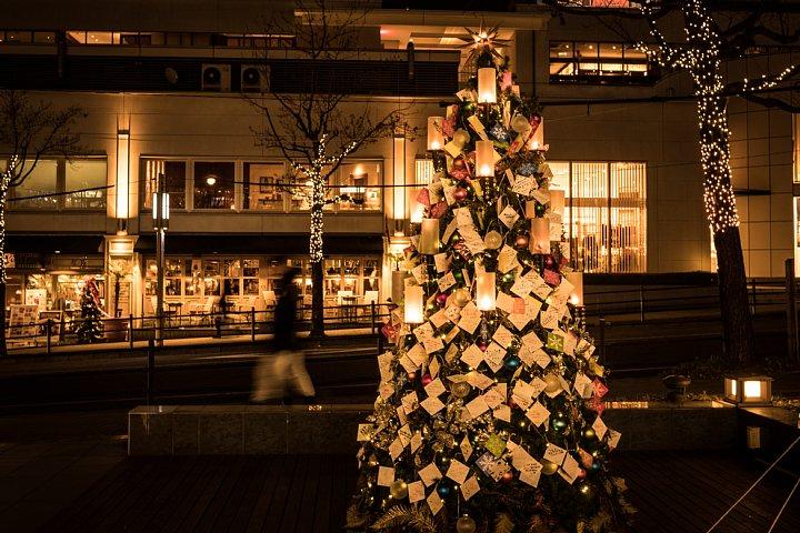 Hoshigaoka Terrace After Dark_d0353489_23341717.jpg