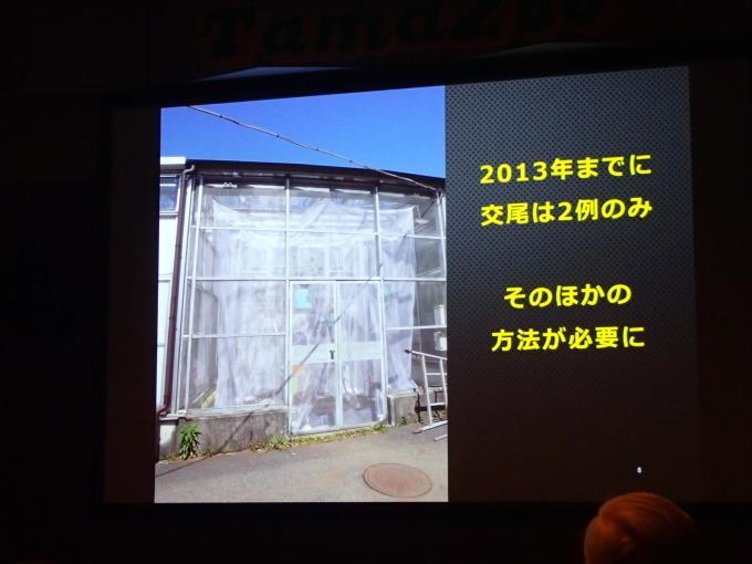 多摩動物公園             オガサワラシジミ飼育2017/12/09①_d0251807_07140522.jpg