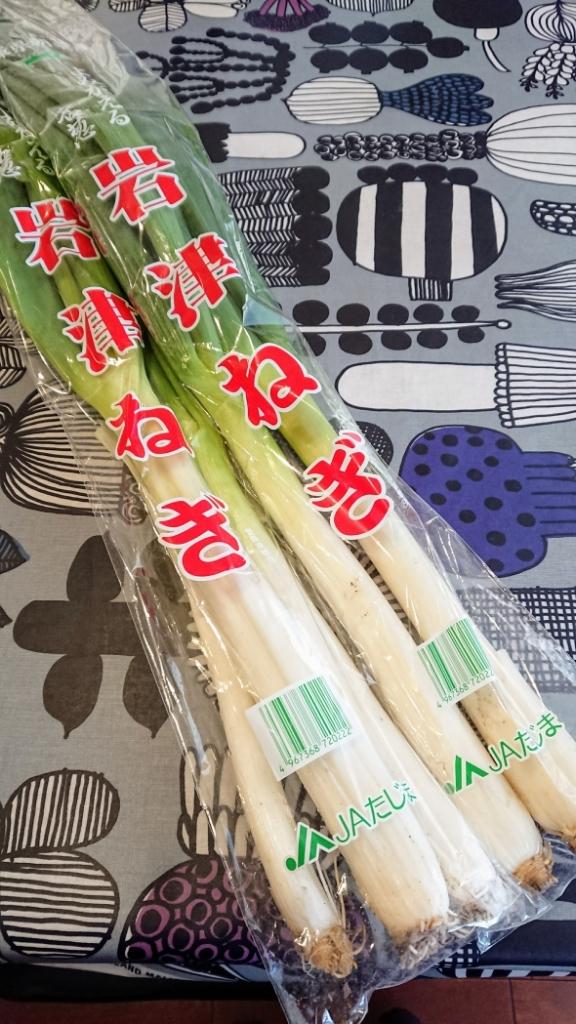 岩津ネギ☆マニア_e0167593_16361233.jpg