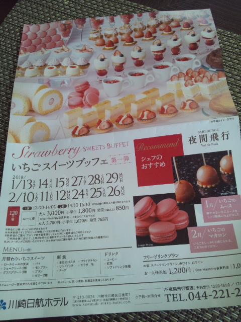川崎日航ホテル 夜間飛行 冬の贈り物スイーツブッフェ_f0076001_22255419.jpg