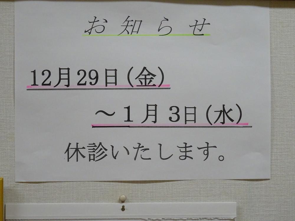 枝焼却_c0111229_17250749.jpg