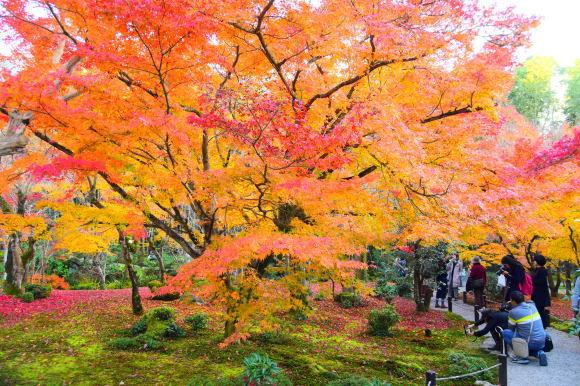京都パンパン赤線時代 五十一_f0347663_11121419.jpg