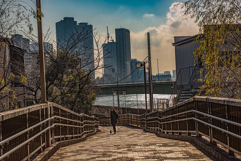 記憶の残像 2017年 花の東京 -62 東京都中央区 佃島_f0215695_22304713.jpg