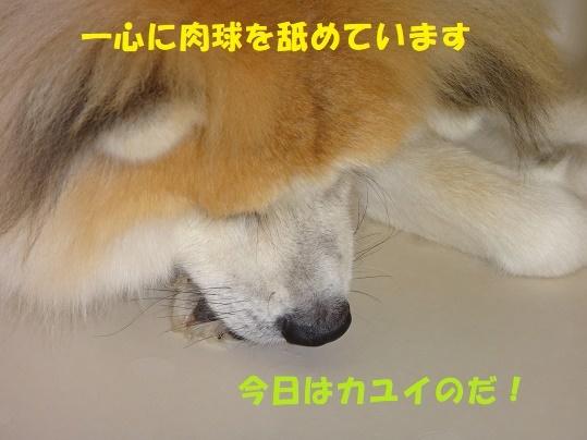 f0121712_08315088.jpg