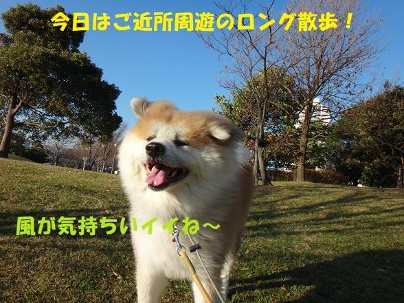 f0121712_08440369.jpg