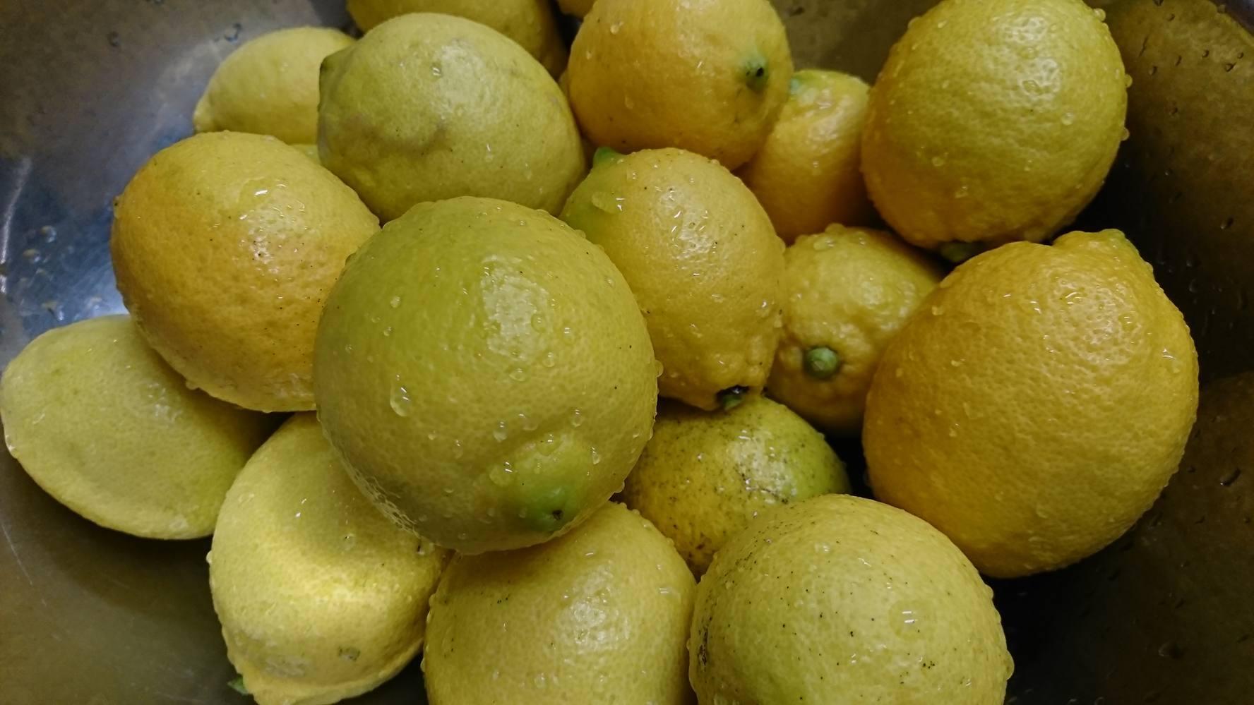 年末、年始のお知らせ、お歳暮作り、レモン、柚子、かぼす、冬の仕込み。_a0125419_08244302.jpg