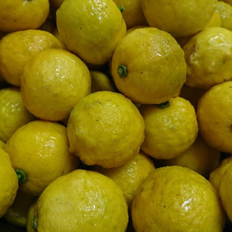 年末、年始のお知らせ、お歳暮作り、レモン、柚子、かぼす、冬の仕込み。_a0125419_08414821.jpg