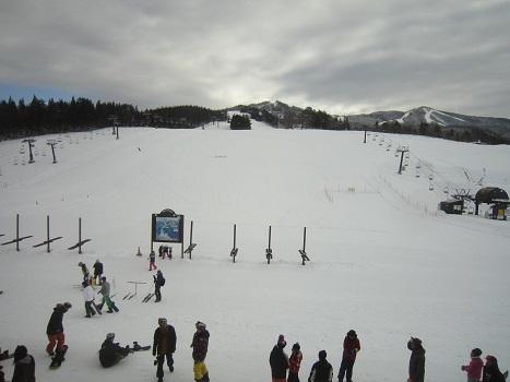 ヴィヴィの雪あそび(2)_b0177436_11325894.jpg