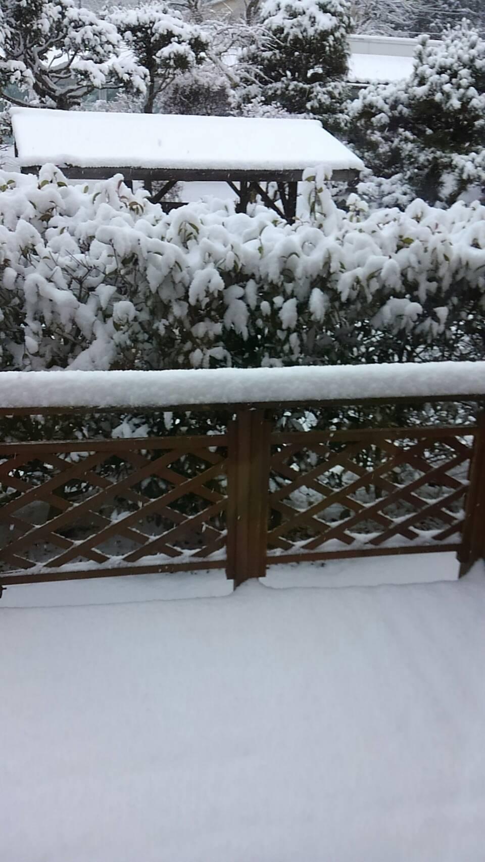 真冬の寒さ_a0272765_12505387.jpg