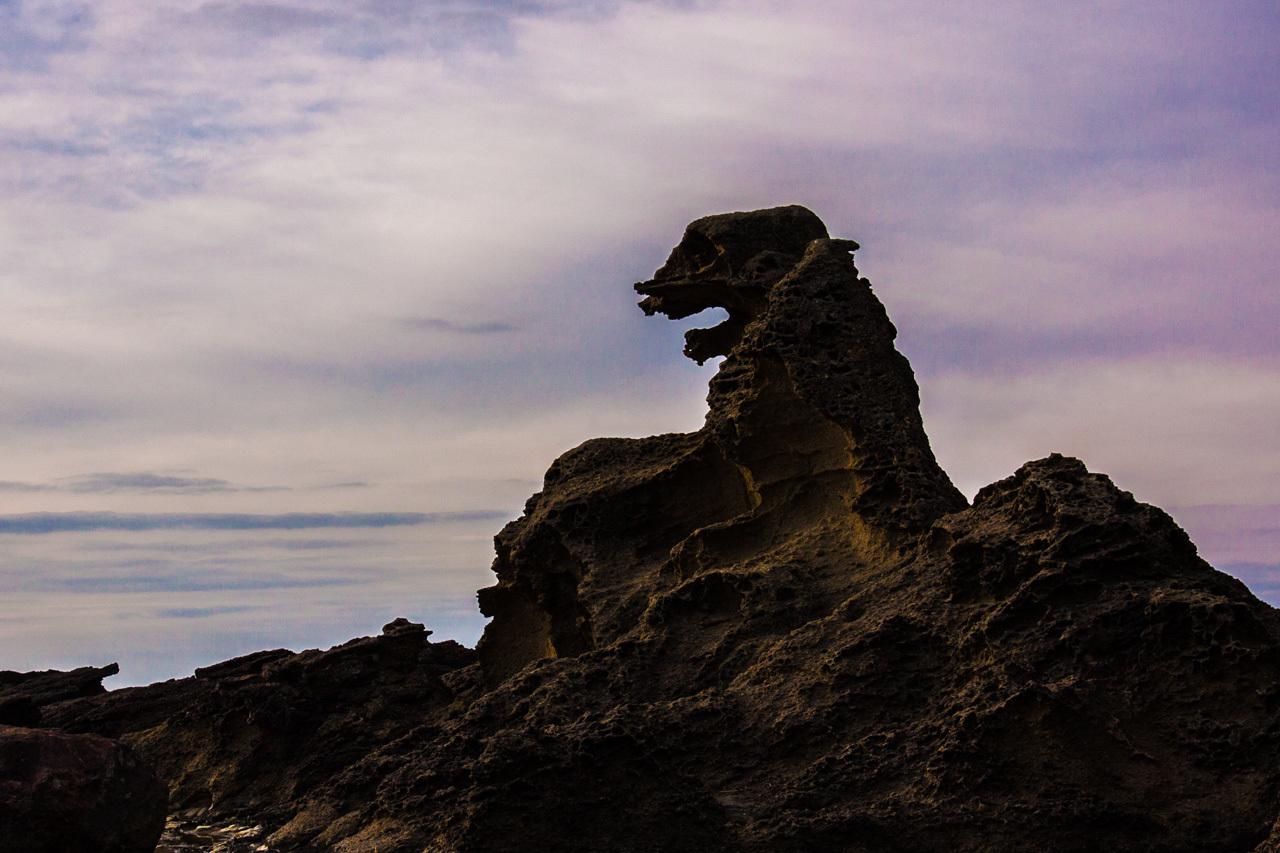 ハクガン 5  用心棒のヒシクイ 塩瀬崎灯台のゴジラ岩_a0052080_20410184.jpg