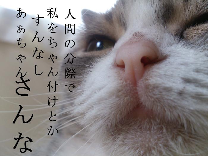 b0191213_15291107.jpg