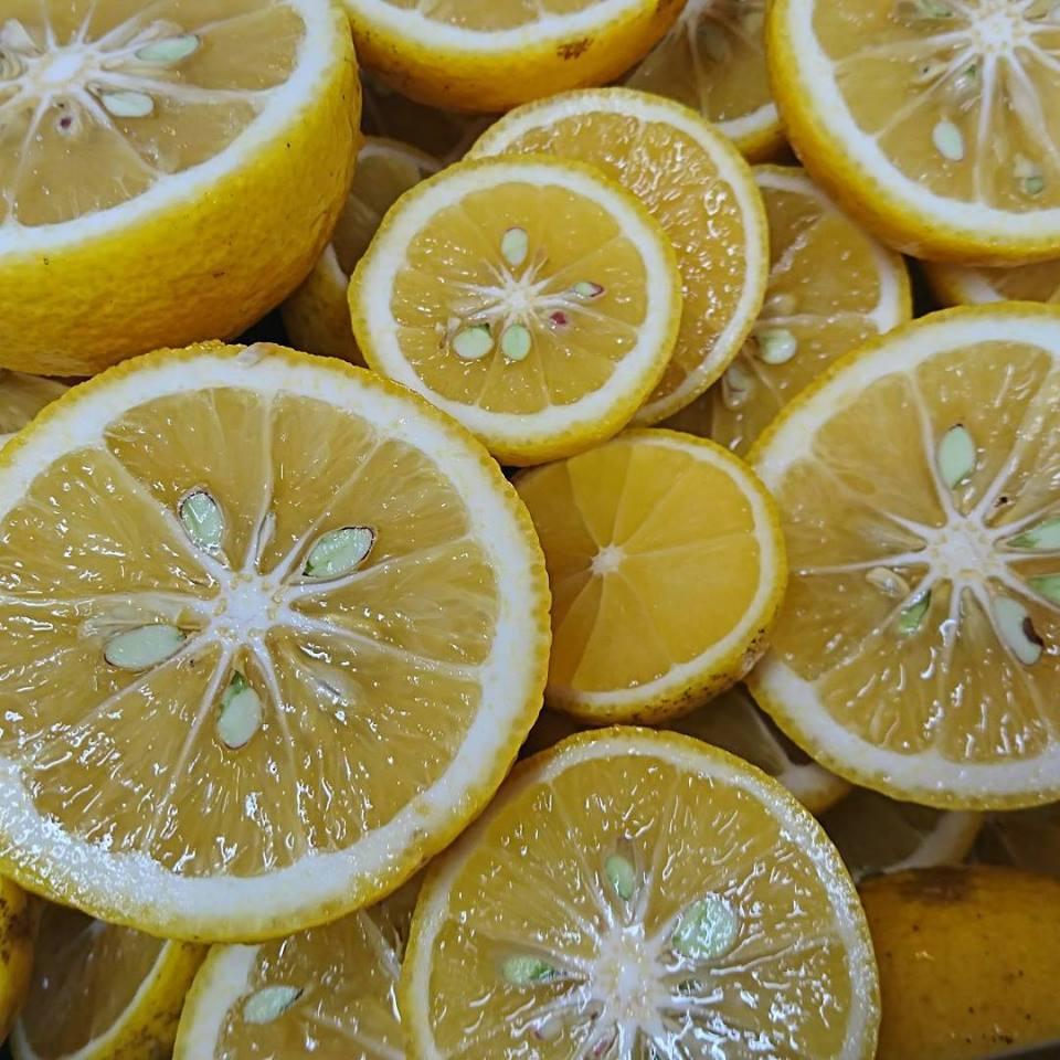 年末、年始のお知らせ、お歳暮作り、レモン、柚子、かぼす、冬の仕込み。_a0125419_08204869.jpg