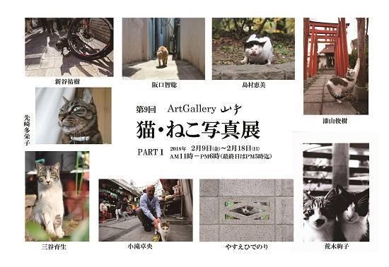 「第9回 猫・ねこ写真展」 PART1/PART2_c0194541_12244164.jpg