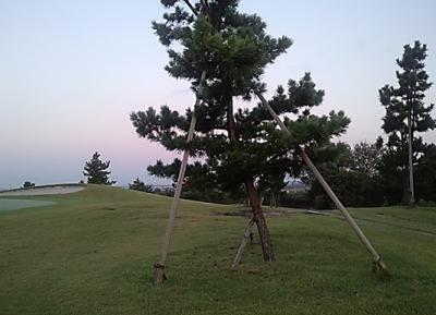 平成29年9月 ゴルフ場 管理作業 その2_d0338682_09273699.png