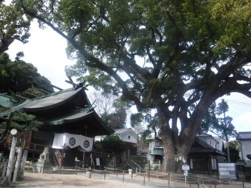 岡山市から尾道へ_d0195183_02542571.jpeg