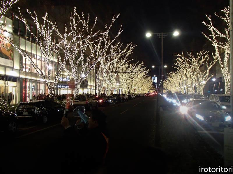 新宿です!!  (ワカケホンセイインコ)  2017/12/10_d0146592_00273087.jpg