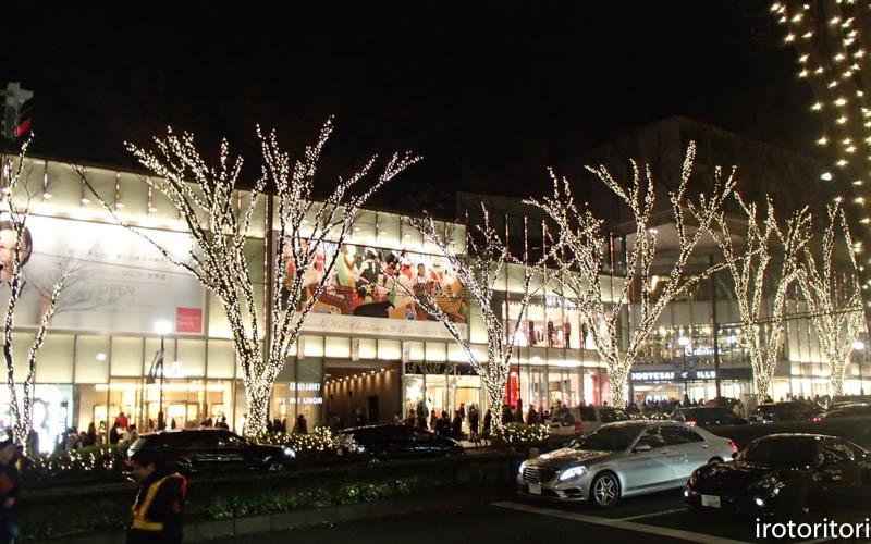 新宿です!!  (ワカケホンセイインコ)  2017/12/10_d0146592_00290766.jpg