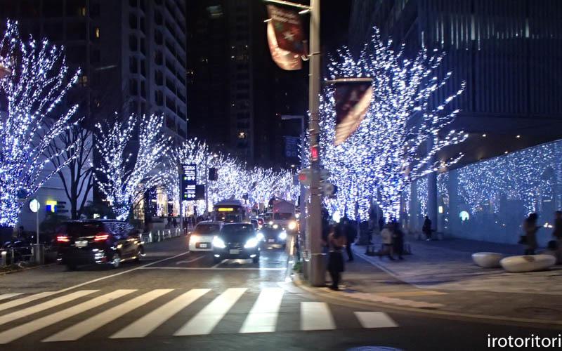 新宿です!!  (ワカケホンセイインコ)  2017/12/10_d0146592_00352737.jpg