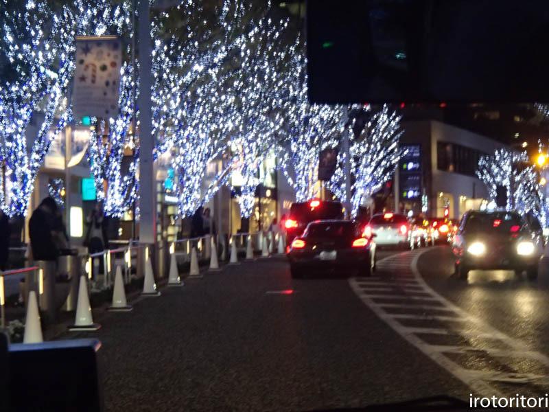 新宿です!!  (ワカケホンセイインコ)  2017/12/10_d0146592_00380145.jpg