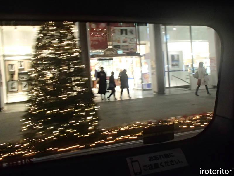 新宿です!!  (ワカケホンセイインコ)  2017/12/10_d0146592_00392290.jpg