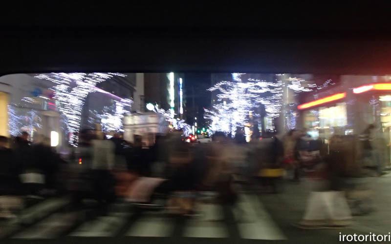新宿です!!  (ワカケホンセイインコ)  2017/12/10_d0146592_00394540.jpg