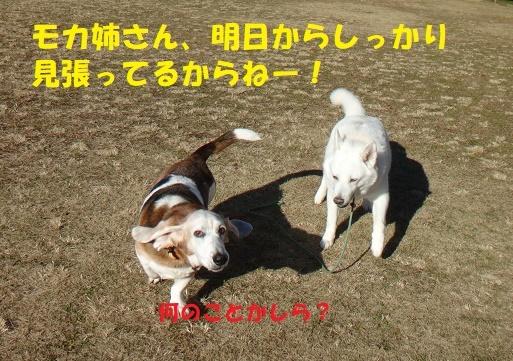 f0121712_22503967.jpg