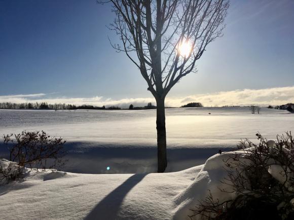 気持ちの良い冬晴れです☀️_f0096216_09113866.jpg