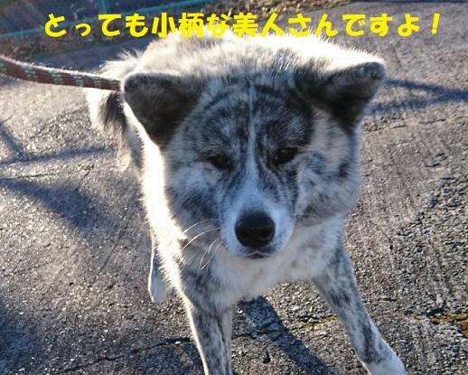 f0121712_14090780.jpg
