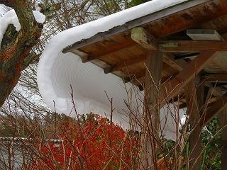 雪のカーテン?_e0030924_07505754.jpg