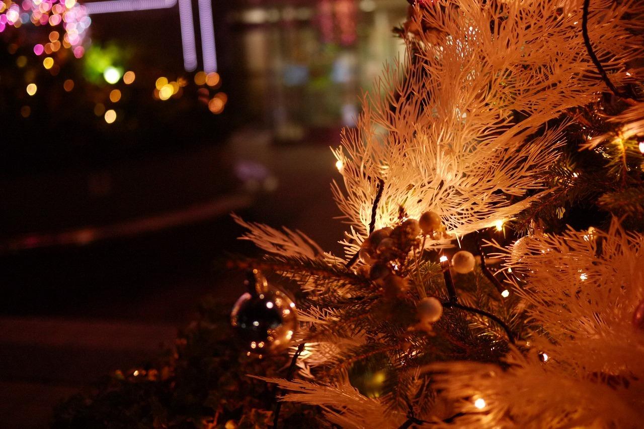 寒くなりましたね 来週はクリスマスです_d0171835_14110607.jpg