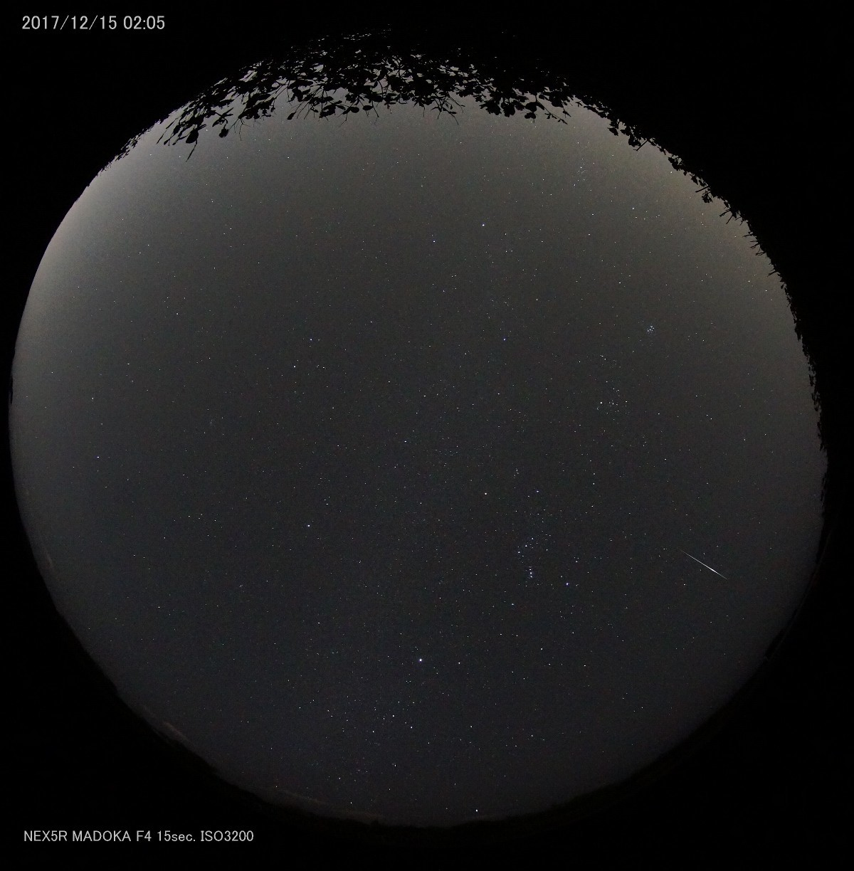 まどかとふたご座流星群を撮りに行った_a0095470_05291909.jpg