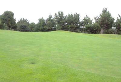 平成29年9月 ゴルフ場 管理作業 その4_d0338682_08481199.png