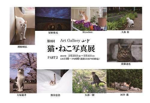 「第9回 猫・ねこ写真展」 PART1/PART2_c0194541_23074349.jpg