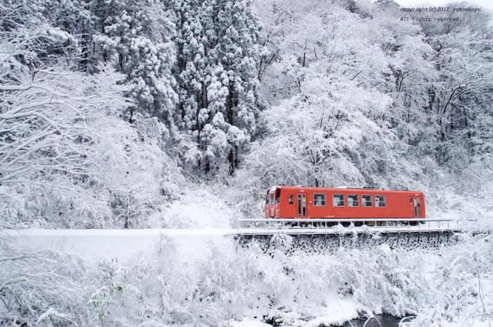 雪の森を - ローカル鉄道散歩