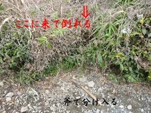 f0379722_15071460.jpg