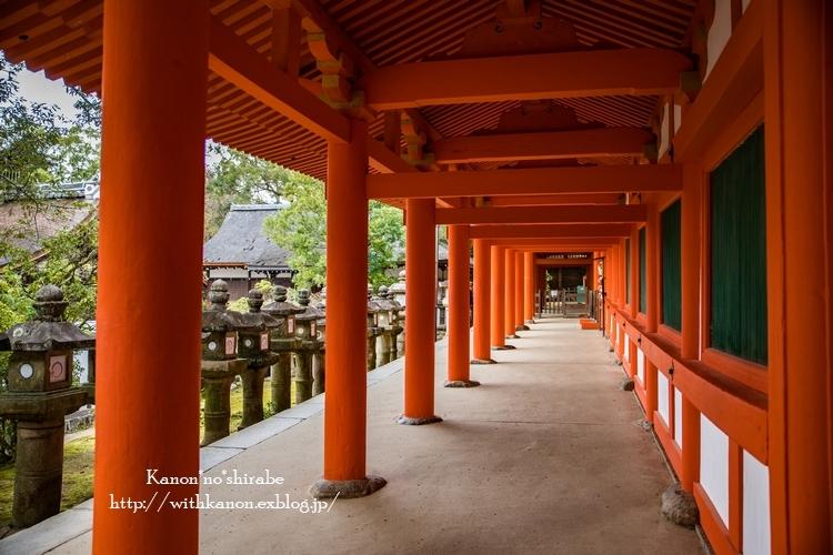 奈良公園2017②_d0148187_15203114.jpg