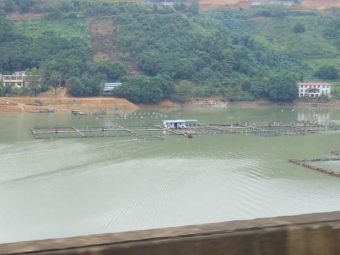 4日目:河口→元陽_a0207588_17005820.jpg