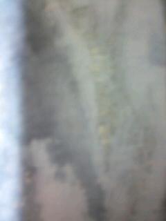 b0136144_6441037.jpg