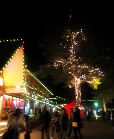 軽井沢冬ものがたり*恵みシャレ―軽井沢のクリスマス・2017_f0236260_18075262.jpg