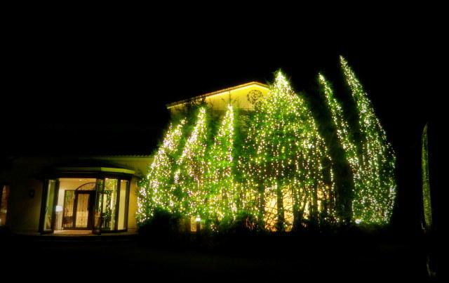 軽井沢冬ものがたり*恵みシャレ―軽井沢のクリスマス・2017_f0236260_18082494.jpg