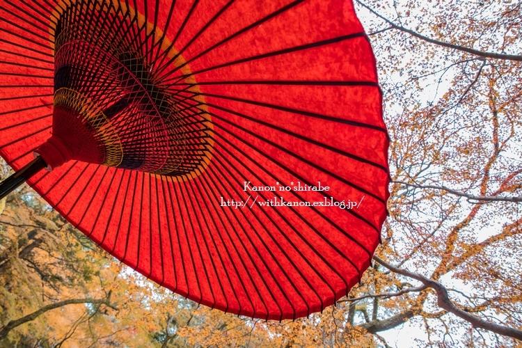 奈良公園2017③_d0148187_18344644.jpg