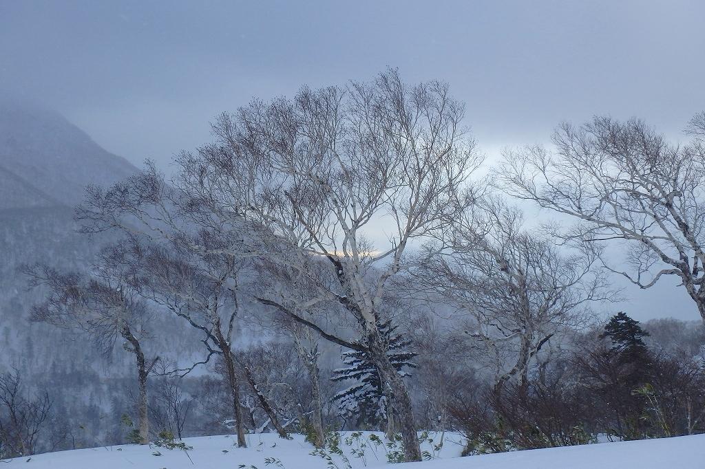 オコタンペ山、2017.12.18_f0138096_18061850.jpg